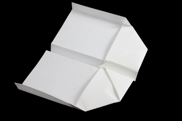 Flower Box Origami Instructions